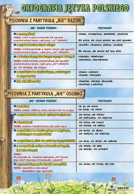 Język Polski Ortografia Plansze Dydaktyczne