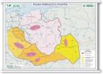 Polska Pierwszych Piastów/Ziemie Polskie w czasie rozbicia dzielnicowego (BP)